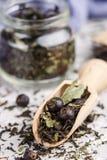 健康清凉茶用黑醋栗 免版税库存图片