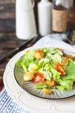 健康烤鸡凯萨色拉用乳酪和油煎方型小面包片 免版税库存照片