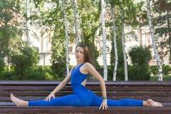健康生活方式本质上,做在席子的妇女瑜伽锻炼在公园 库存照片