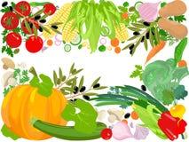 健康生活向量 库存图片