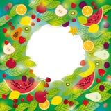 健康生活方式 套果子和叶子在绿色背景框架的您的文本 免版税库存图片