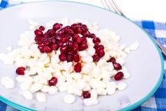 健康的食物 与石榴种子的可口自创酸奶干酪 库存图片