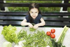 健康的食物 图库摄影