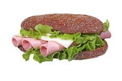 健康的cheesburger 免版税库存图片