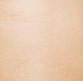健康皮肤 免版税库存图片