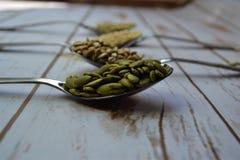 健康种子 库存照片