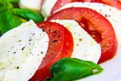 健康经典caprese沙拉-蕃茄、无盐干酪和蓬蒿 免版税库存图片