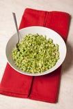 健康绿色菜沙拉 免版税图库摄影
