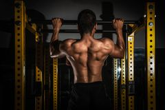健康肌肉年轻人背面图有他的胳膊的延长,显示六块肌肉吸收的强的运动人健身模型躯干, 免版税库存照片