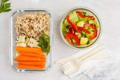 健康膳食预习功课容器用糙米、豆腐和菜 库存图片