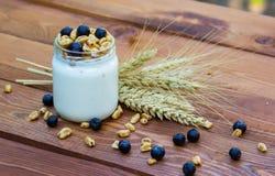 健康自创酸奶用谷物和蓝色莓果 免版税图库摄影
