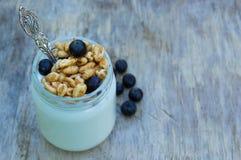 健康自创酸奶用谷物和蓝色莓果 免版税库存照片