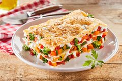 健康菜烤宽面条的大部分 免版税库存图片