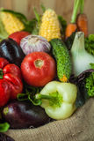 健康菜的混合 库存图片