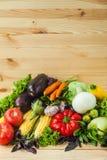 健康菜的混合 库存照片