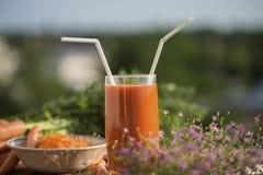 健康营养红萝卜成份,用不同的盘 免版税库存照片