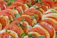 健康蕃茄和无盐干酪在沙拉起始者行砍了 免版税库存图片