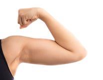 健康运动的看的肌肉 免版税库存图片