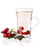 健康野玫瑰果茶 免版税库存图片