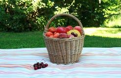 健康野餐 库存图片