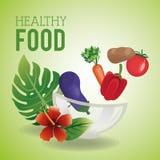 健康食物设计 有机图标 colorfull例证 免版税库存图片