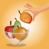 健康食物设计 有机图标 colorfull例证 库存照片