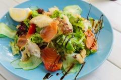 健康餐馆食物、三文鱼和鳕鱼沙拉特写镜头 图库摄影