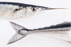 健康饮食的新鲜的颌针鱼 免版税库存图片