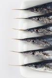 健康饮食的新鲜的颌针鱼 库存图片