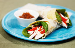 健康鸡丁沙拉换行用红色甜椒 库存图片