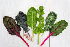 健康绿色菜的范围在一张白色桌上的 库存图片