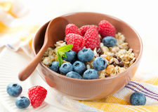 健康素食早餐 免版税库存照片