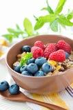 健康素食早餐 免版税库存图片
