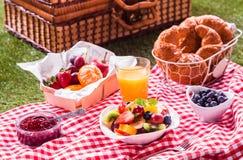健康素食主义者或素食主义者野餐 免版税库存照片