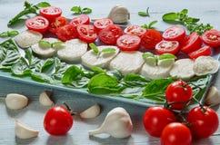 健康caprese沙拉用切的无盐干酪乳酪,西红柿,新鲜的蓬蒿离开,大蒜 食物意大利传统 免版税库存图片