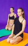 健身、体育、训练和生活方式概念-微笑做在席子的两名运动的妇女锻炼在健身房 库存照片
