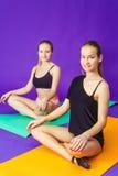 健身、体育、训练和生活方式概念-微笑做在席子的两名运动的妇女锻炼在健身房 库存图片