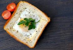 健身三明治用鸡蛋和蕃茄 库存照片