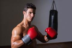 健身俱乐部的严肃的肌肉拳击手 免版税库存照片