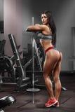 健身女孩,解决与在健身房的杠铃的性感的运动妇女 在皮带的性感的美丽的驴子 免版税库存照片