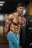 健身房的,形状胃肠性感的肌肉人 强的男性赤裸躯干吸收,解决 免版税库存照片