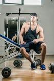 健身房训练锻炼 免版税图库摄影