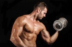健身房训练锻炼 免版税库存图片