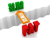 健身是从减肥的FAT的桥梁。 免版税图库摄影