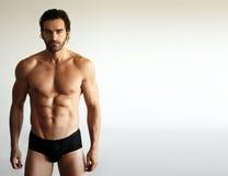 健身男性模型性感 库存图片