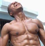 健身男性非裔美国人的模型 免版税库存图片