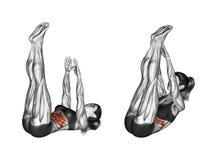 健身行使 身体的弯曲与手和脚的化合物的 女性 库存照片