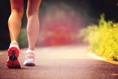 健身运行在森林足迹的妇女腿 库存图片