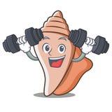 健身逗人喜爱的壳字符动画片 库存图片