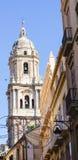 偶象马拉加大教堂钟楼  库存照片
